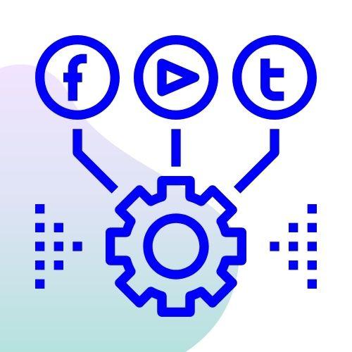 Billionaire surge social media management